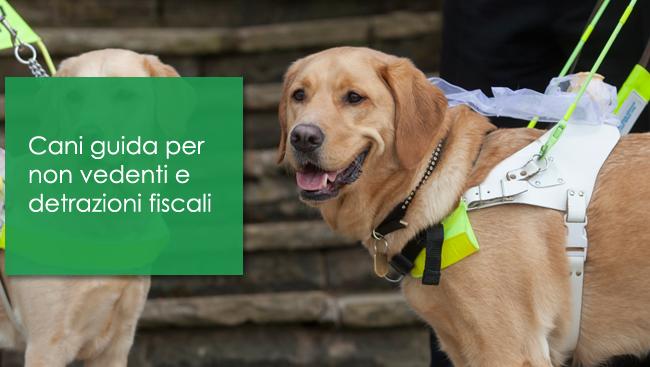 Cani guida per non vedenti e detrazioni fiscali