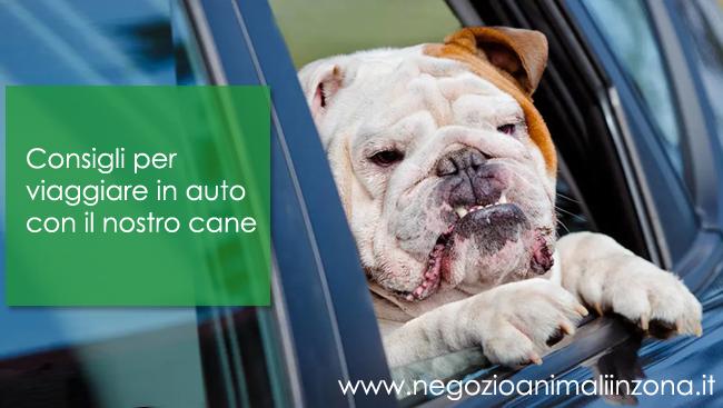 Consigli per viaggiare con il nostro cane in auto