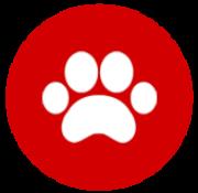 negozi di animali
